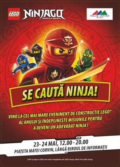 LEGO NINJAGO la Polus Center_potrait