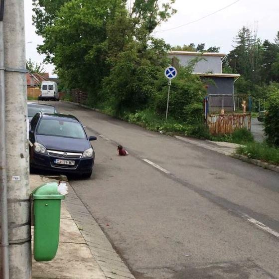 copil in mijlocul drumului, cluj