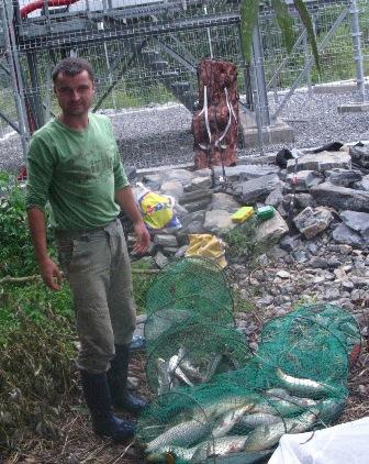 Pescuit in Delta Dunarii, Chilia, capturi